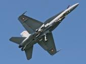 Hornet F/A-18C J-5010