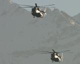 Sikorsky CH-53 84+77 und 84+54 des deutschen Heeres