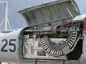 20 mm M39A2 Bordkanone (Colt-Browning) mit insgesamt 560 Schuss