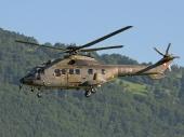 Super Puma AS332 T-313